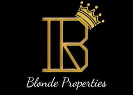 Introduction to Blonde Properties